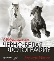 Современная черно-белая фотография ISBN 978-5-459-00457-1