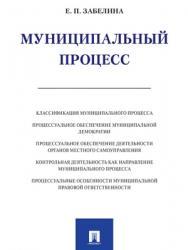 Муниципальный процесс : монография ISBN 978-5-392-27455-0