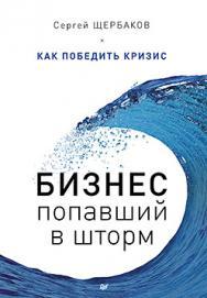 Бизнес, попавший в шторм. Как победить кризис ISBN 978-5-496-01973-6