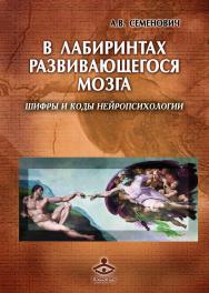 В лабиринтах развивающегося мозга. Шифры и коды нейропсихологии ISBN 978-5-98563-500-3