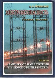 Электробезопасность. В 3-х ч. Ч. III. Защита от напряжения прикосновения и шага ISBN STGau0020